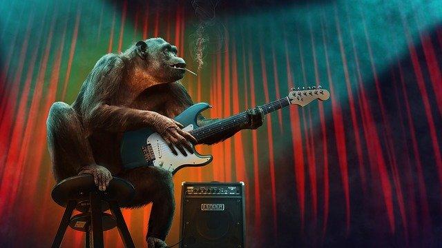 opice s kytarou