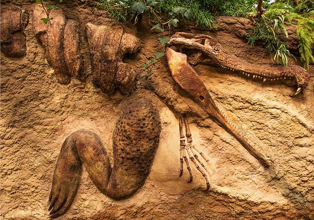 vytvořené fosilie