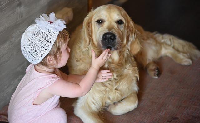dívka a pes