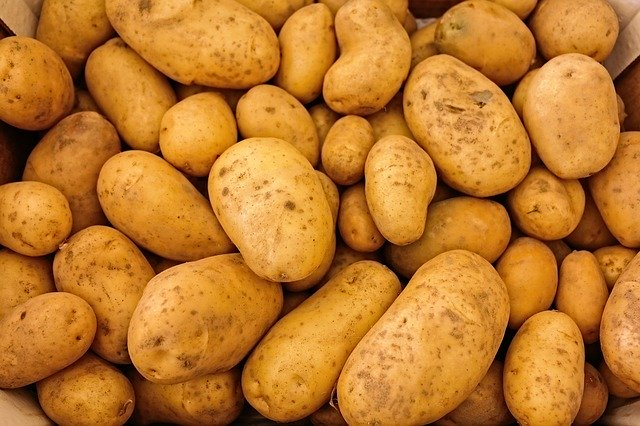 ranné brambory